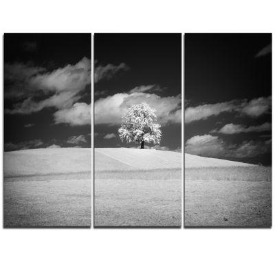 Designart Lonely Tree On Meadow Black White Landscape Artwork Triptych Canvas