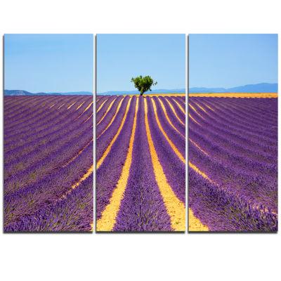 Designart Lonely Uphill Tree In Lavender Field Oversized Landscape Wall Art Print