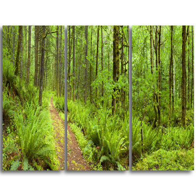 Designart Lush Forest Path Columbia River ForestTriptych Canvas Wall Art Print