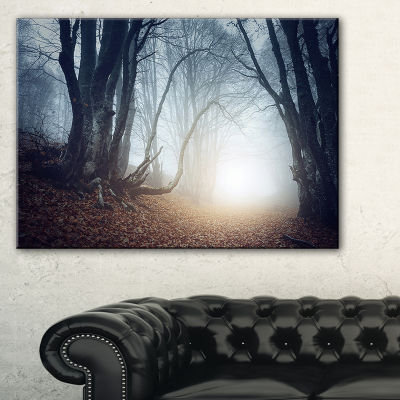 Designart Magical Trees In Mysterious Forest Modern Forest Canvas Wall Art