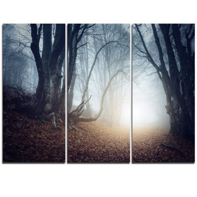 Designart Magical Trees In Mysterious Forest Modern Forest Triptych Canvas Wall Art