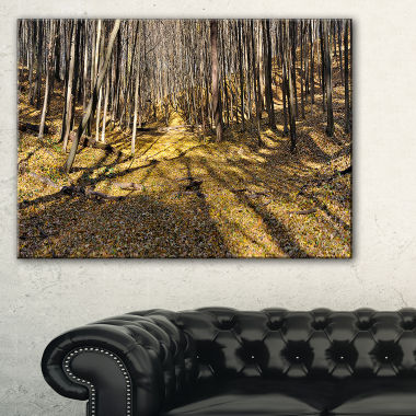 Designart Majestic Autumn Forest Panorama Landscape Artwork Canvas