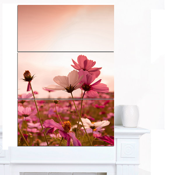 Designart Meadow With Beautiful Cosmos Flowers Floral Canvas Art Print - 3 Panels