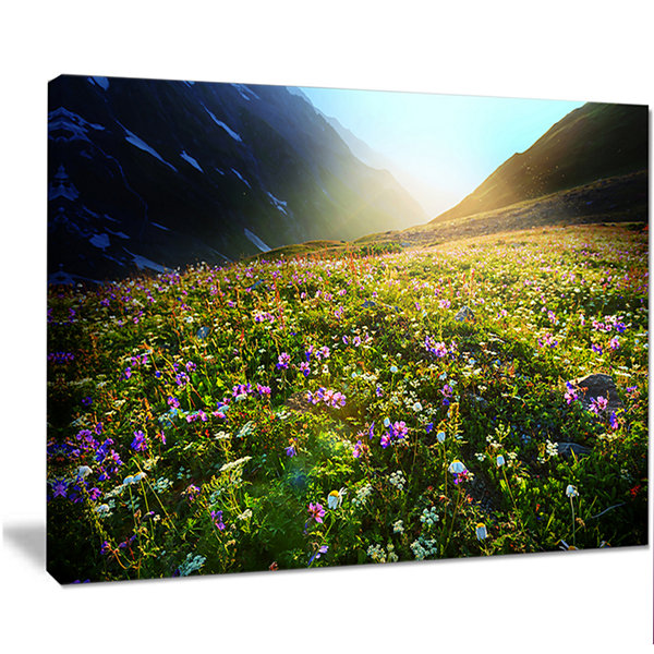 Designart Meadow With Colorful Flowers OversizedLandscape Canvas Art