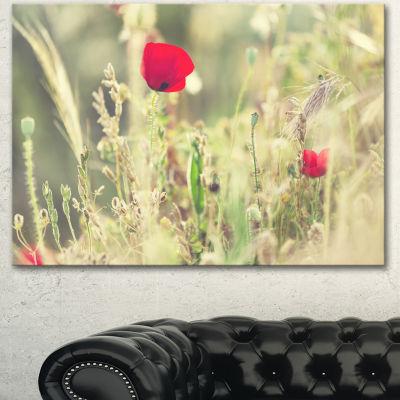 Designart Meadow With Wild Poppy Flowers Large Flower Canvas Art Print - 3 Panels