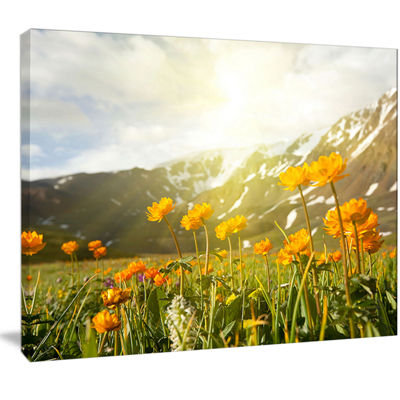 Designart Mountain Pasture With Yellow Flowers Floral Canvas Art Print