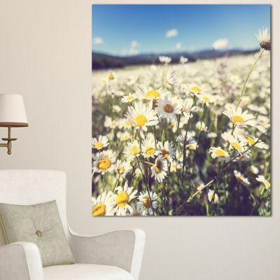Designart Mountain Plain With Daisy Flowers LargeFlower Canvas Art Print - 3 Panels