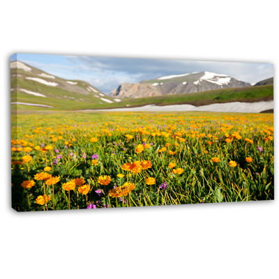 Designart Mountain Plain With Wild Yellow FlowersFloral Canvas Art Print