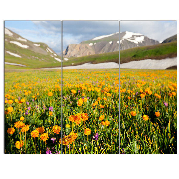 Designart Mountain Plain With Wild Yellow FlowersFloral Canvas Art Print - 3 Panels
