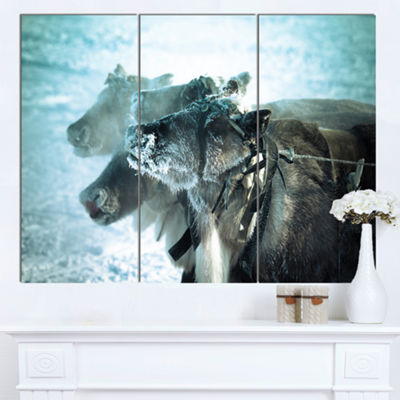 Designart Muzzle Reindeer In Frost Oversized Animal Wall Art - 3 Panels