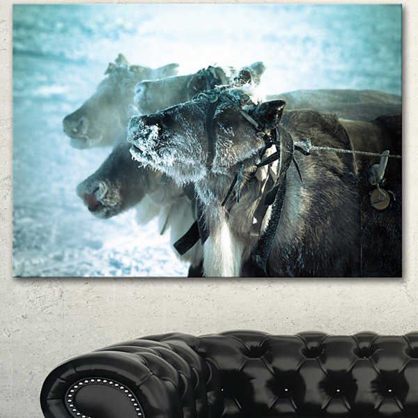 Design Art Muzzle Reindeer In Frost Oversized Animal Wall Art - 3 Panels