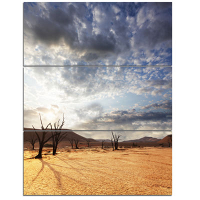 Designart Namib Desert Under Cloudy Sky OversizedLandscape Canvas Art - 3 Panels