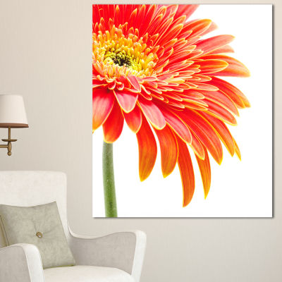 Designart Orange Gerbera On White Background Floral Canvas Art Print - 3 Panels