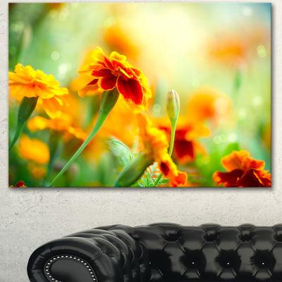 Designart Orange Tagetes Marigold Flowers Floral Canvas Art Print
