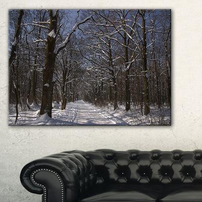 Design Art Path On Sunny Winter Day In Park ModernForest Canvas Art