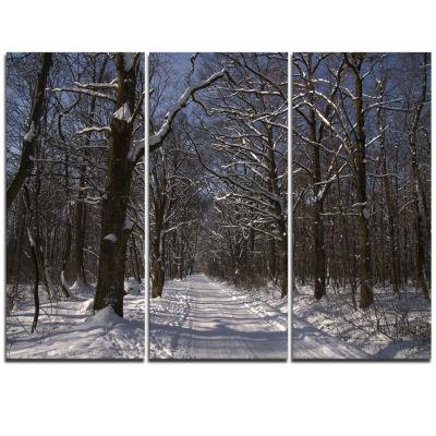 Designart Path On Sunny Winter Day In Park ModernForest Triptych Canvas Art