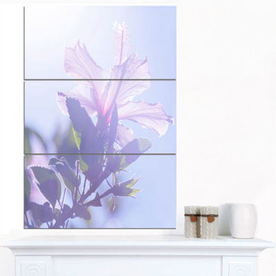 Designart Pink Hibiscus Flower In Hawaii Large Flower Canvas Art Print - 3 Panels