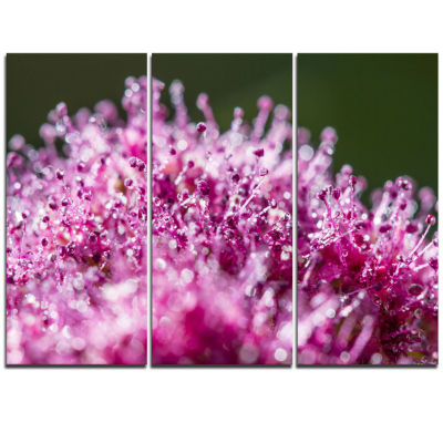 Designart Pink Little Flowers Close Up View LargeFloral Wall Art Triptych Canvas