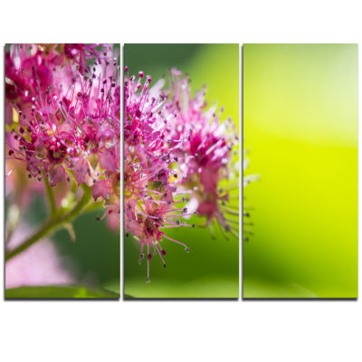 Designart Pink Little Flowers In Green Floral ArtTriptych Canvas Print