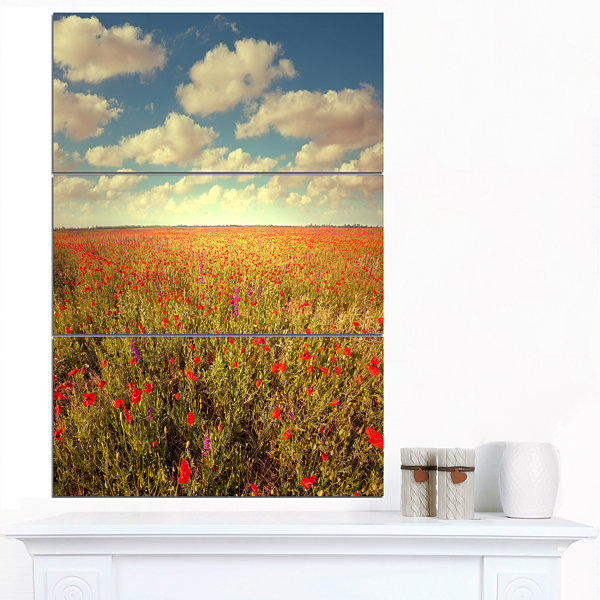 Design Art Poppy Filed Under Bright Sky Floral Canvas Art Print - 3 Panels
