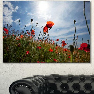 Designart Poppy Flower Field View From Ground Floral Canvas Art Print