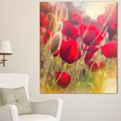 Designart Poppy Flowers Meadow In Sunlight Large Flower Canvas Wall Art - 3 Panels