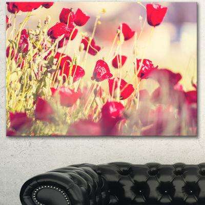 Designart Poppy Flowers On Light Background FloralCanvas Art Print - 3 Panels