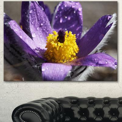 Designart Purple Flower With Yellow Stigma FloralCanvas Art Print
