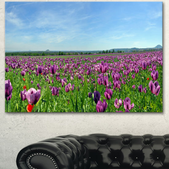 Designart Purple Poppy Field Panorama Floral Canvas Art Print