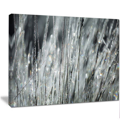 Designart Raindrops On Grass Black White OversizedLandscape Canvas Art