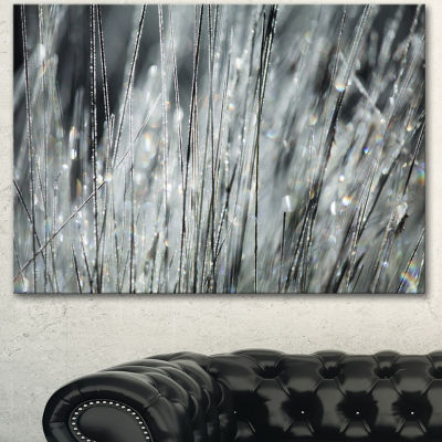 Designart Raindrops On Grass Black White OversizedLandscape Canvas Art - 3 Panels