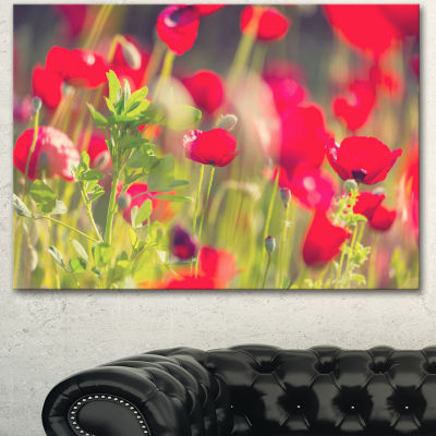 Designart Red Poppies On Green Background Large Flower Canvas Art Print - 3 Panels