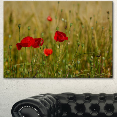 Design Art Red Poppy Flower Field Background LargeFlower Canvas Wall Art - 3 Panels