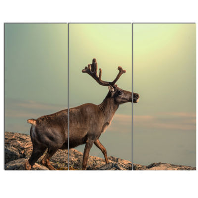 Designart Reindeer On Top Of The Mountain AnimalCanvas Art Print - 3 Panels