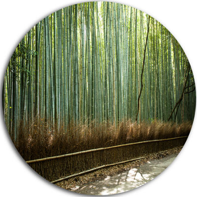 Design Art Beautiful View of Bamboo Forest ForestMetal Circle Wall Art Print