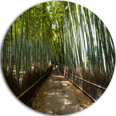 Design Art Wide Pathway in Bamboo Forest Forest Metal Circle Wall Art Print
