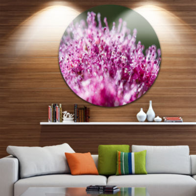 Design Art Pink Little Flowers Close up View UltraGlossy Floral Circle Wall Art