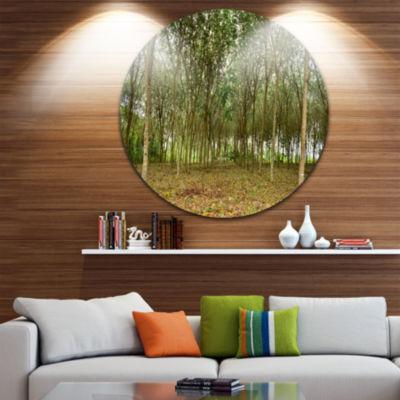 Design Art Rubber Tree Plantation during Midday Landscape Metal Circle Wall Art