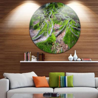 Design Art Green Wild Deep Moss Forest Landscape Metal Circle Wall Art