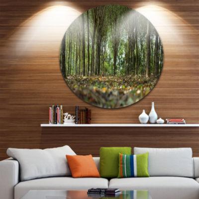 Design Art Dense Rubber Tree Plantation LandscapeMetal Circle Wall Art