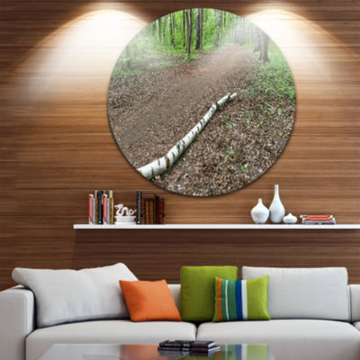 Design Art Trunk of Birch on the Track Contemporary Landscape Metal Circle Wall Art