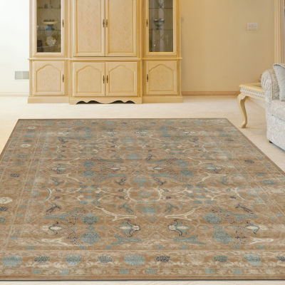 Colosseo Danelle Traditional Oriental Vintage Area Rug