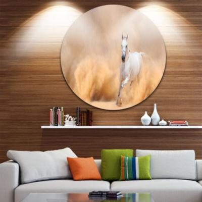 Design Art Arabian Horse in Desert Storm Photography Circle Metal Wall Art