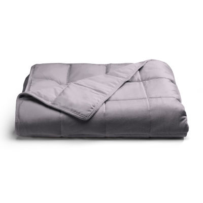 Sealy Weighted Plush Blanket
