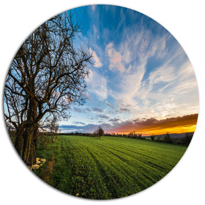 Design Art Green Pasture under Blue Sky Disc ExtraLarge Landscape Metal Circle Wall Art