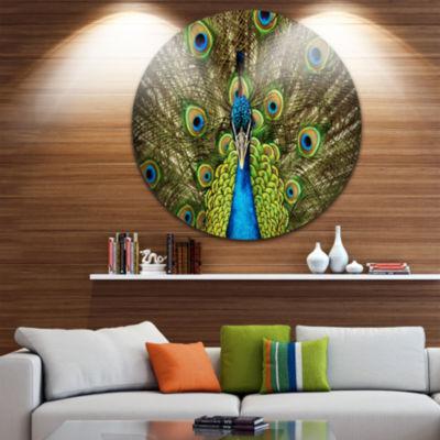 Design Art Grand Peacock Disc Animal Photography Circle Metal Wall Art