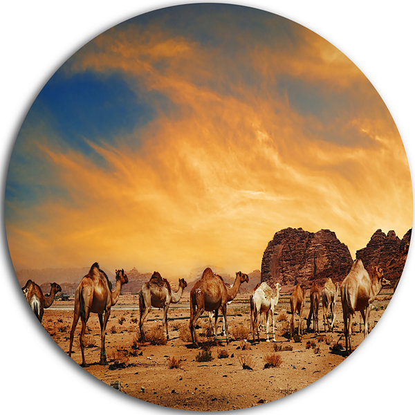 Design Art Camels in Wadi Rum Disc Photography Circle Metal Wall Art