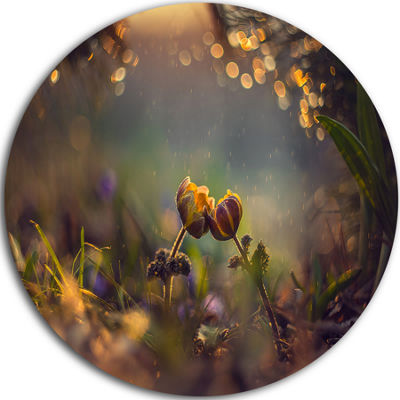 Design Art Two Spring Flowers Disc Floral Photography Circle Metal Wall Art
