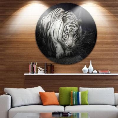 Design Art White Tiger Animal Photography Circle Metal Wall Art
