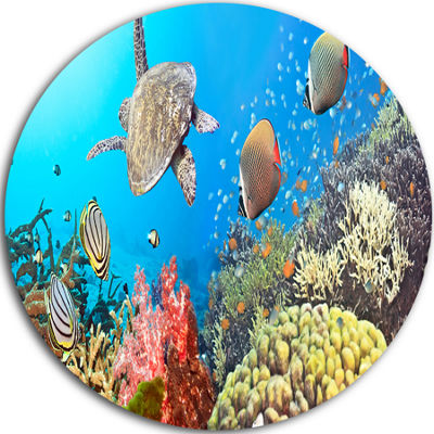 Design Art Undersea Panorama Disc Photography Circle Metal Wall Art